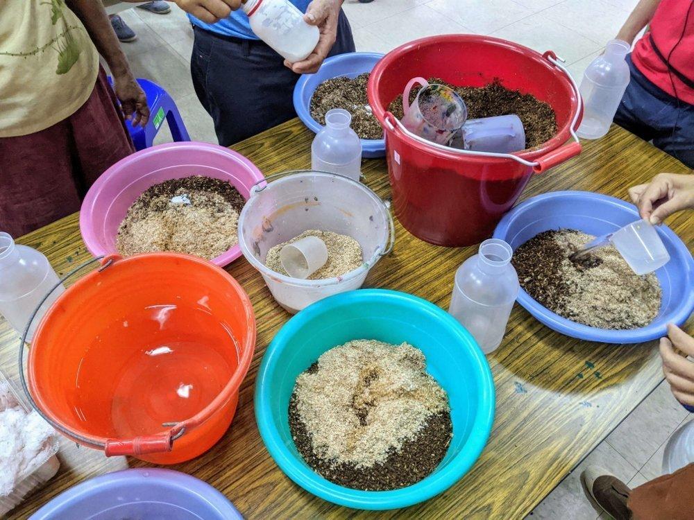 豐年靈芝菇生態農場 太空包DIY (4)