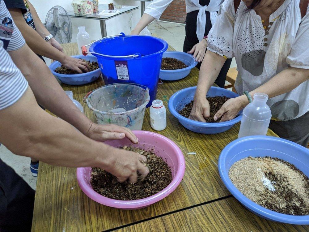 豐年靈芝菇生態農場 太空包DIY