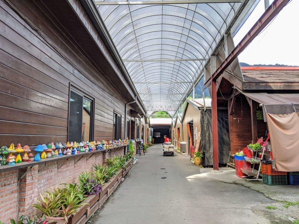 埔里豐年農場|自助採菇、導覽、手做太空包DIY 3