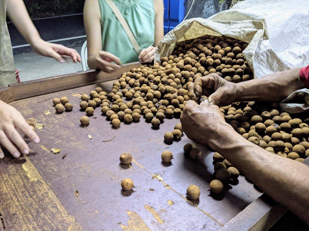 台南東山古法烘焙龍眼乾|龍眼乾臨時工體驗