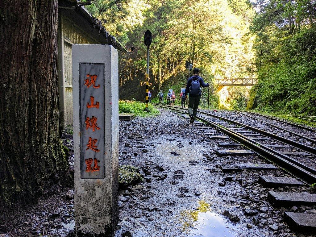 阿里山眠月線一日遊|從入山申請到路線帶你走入最美森林鐵路 3