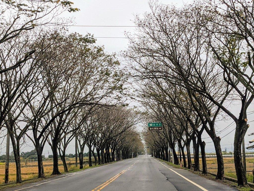 冬天的白河省道