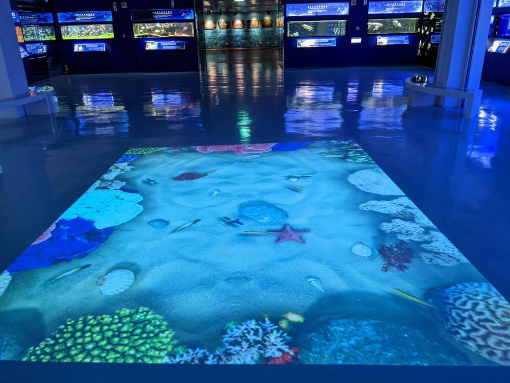 農科園區觀賞水族動物展示中心 地上投影