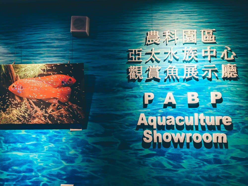 農科園區觀賞水族動物展示中心 照片展示